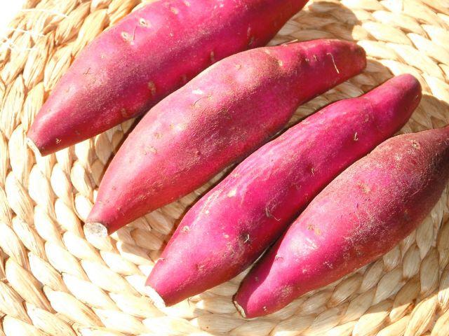 在日本稱作「鳴門金時」的栗子地瓜你吃過嗎?評價如何?調查ptt和Dcard